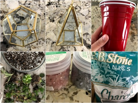 How to Make a Plant Terrarium - supplies