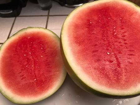 cutting bottom off watermelon