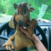 Identifying a Vintage Stuffed Animal - funky stuffed animal