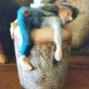 Identifying a Figurine - drunk man lying on belly atop a large jug