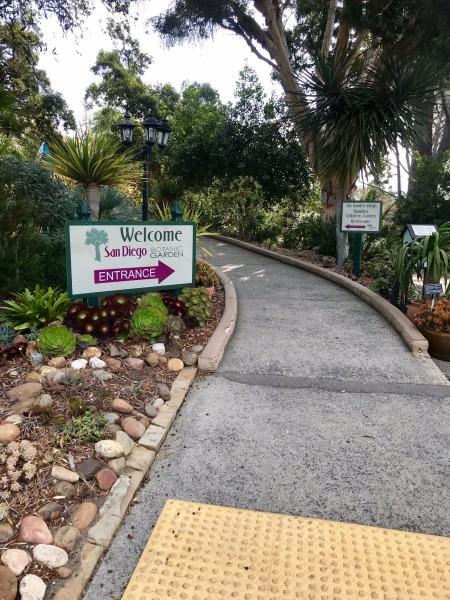 Blue Dragonfly at San Diego Botanic Garden