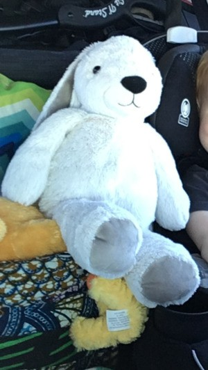Seeking Replacement for Lost Bunny - white stuffed bunny