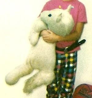 Identifying a Vintage Stuffed Unicorn - child holding a stuffed unicorn from the 1980s