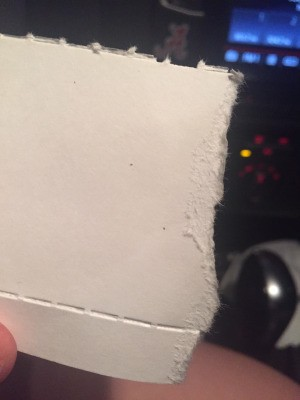 Tiny Black Biting Bugs - specks on a piece of white paper