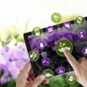 An online nursery app in front of purple flowers.