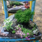 An old wooden painted chair being used as a decorative planter.