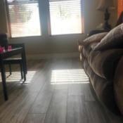 Cleaning Glazed Ceramic Tile - plank ceramic tiles