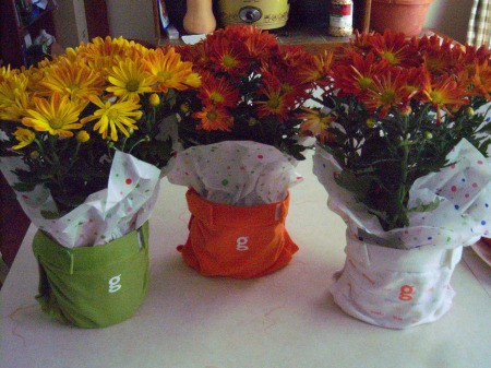 Baby Shower Centerpiece - place tissue paper around the potted mum and slip into a diaper