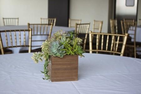 Succulent Wedding Centerpiece - centerpiece on venue table