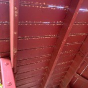 What Is on My Play Structure? - light colored splotches on underside of wood