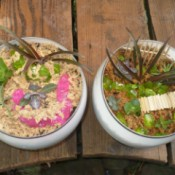 Recycled Glass Light Fixture Terrariums - looking down on two planters sitting on a deck or similar structure
