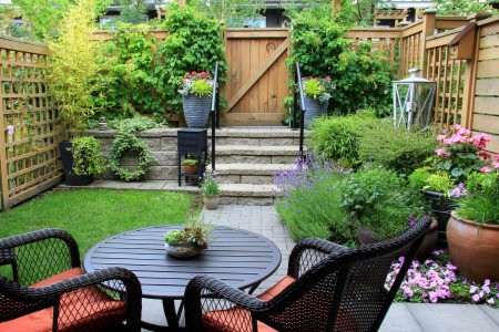 A backyard with a very small lawn.