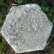 A stepping stone that has a crumbling surface.