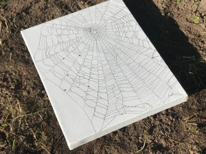 Catching a Spider Web - ready to display