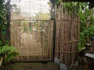 Bamboo Garden Gate - bamboo covered metal garden gate