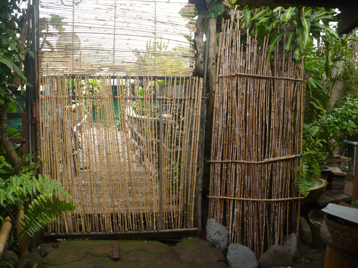 Picture of: Diy Bamboo Garden Gate Thriftyfun