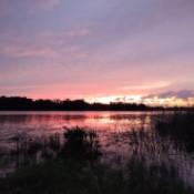 A sunset on Lake Stella (FL)