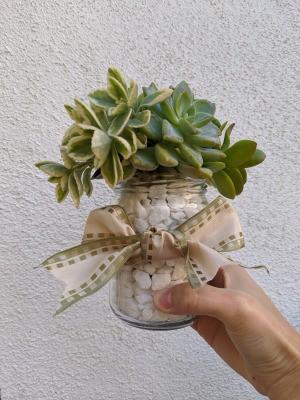 Succulent Jar Centerpiece - hand holding finished jar