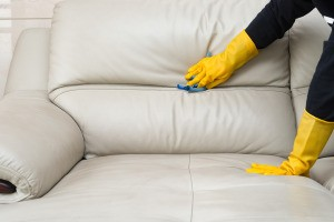 Someone wearing rubber gloves cleaning a leather couch.
