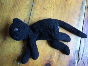 Identifying a Stuffed Toy Cat - worn black cat