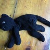 Identifying a Stuffed Toy Cat - worn black cat