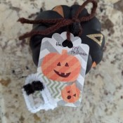 DIY Pumpkin and Ghost Halloween Favor Tag - mini pumpkin with tag