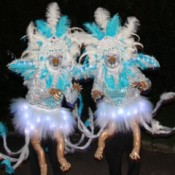 Ice Phoenix Costumes - two women wearing the costumes