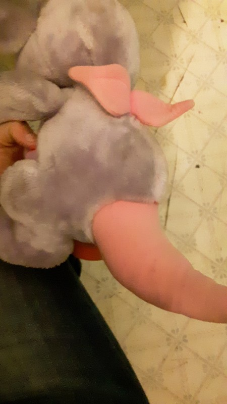 Identifying a Stuffed Elephant