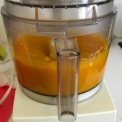 Butternut Squash Puree in blender