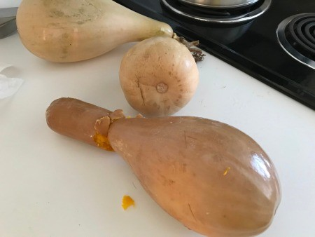 cooked Butternut Squash