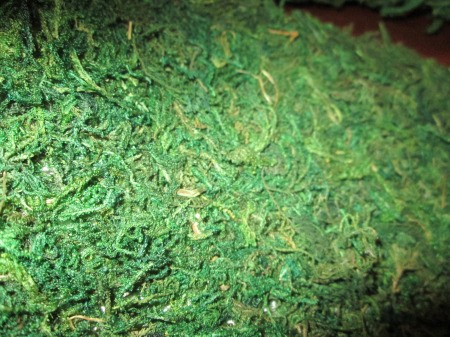 Moss Trim Picture Frame Wreath - moss sheet