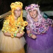 Enchanting Flower Fairies