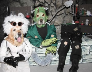 The completed costumes for Dr. Frankenstein and his monster.