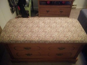 Value of a Murphy 7244 Pillow Top Cedar Chest - top view of the chest