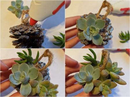 Succulent Pinecone Ornament - adding succulents