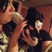 Caring for a Dog with Parvo - woman holding a black puppy