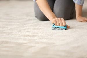 Scrubbing Carpet