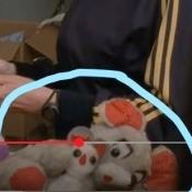 Identifying a Stuffed Mouse
