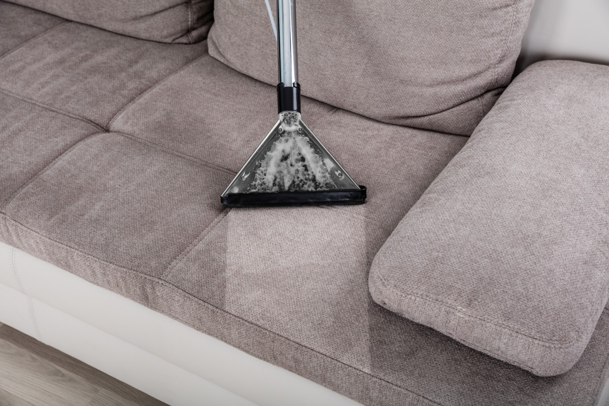 Removing Mold And Mildew From An Upholstered Couch Thriftyfun