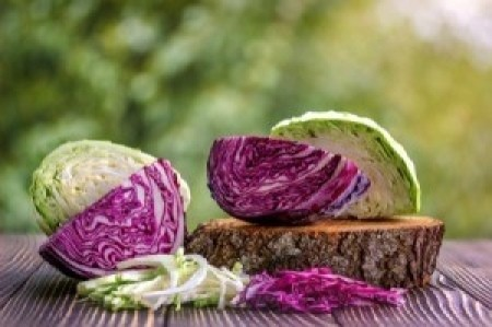 cut red & green cabbage