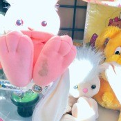 Identifying a Stuffed Bunny - stuffed white bunnies with pink feet on the bottom
