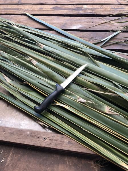 Making A Coconut Leaf Broom -  supplies