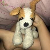 Identifying a Stuffed Dog - light brown and white stuffed dog