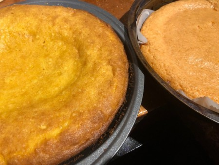 UFO Cow Abduction Cake - lemon and orange cakes in their pans