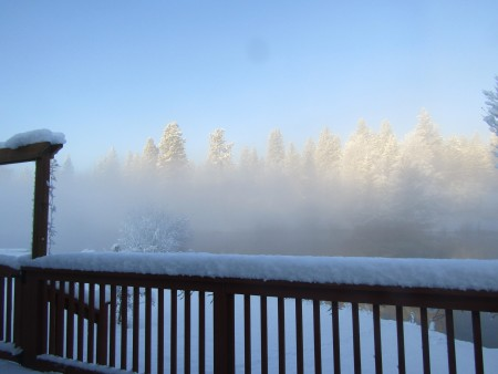 A foggy and snowy view overlooking a treeline.