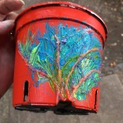Decorative Planter Pots - tree design on red pot