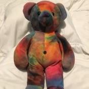 Identifying My Stuffed Bear - multicolor bear