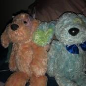Identifying Stuffed Pups - pink and blue stuffed dogs