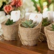 Plant wedding favors.