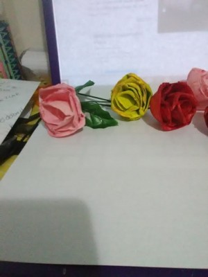 A collection of roses made from Styrofoam egg cartons.